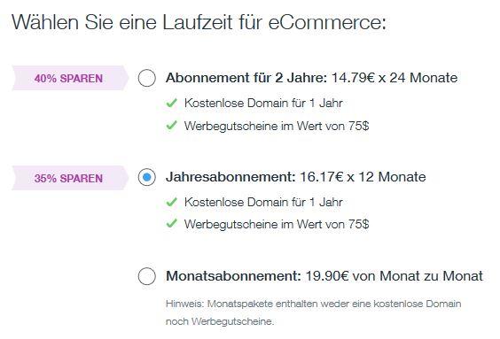 Wix Shop Testbericht: Kosten Laufzeit